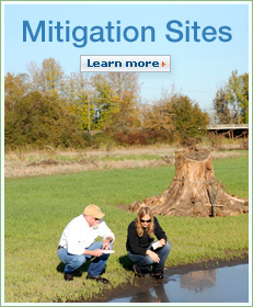 Mitigation Sites. Learn more.
