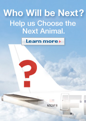 Who will be Next? Help us choose the next animal.