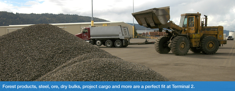 Forest products, steel, ore, dry bulks, project cargo and more are a perfect fit at Terminal 2.